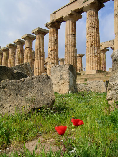 how has spartan military influenced the development of western civilization Greek and roman architectural influences in modern society essay contributions to western civilization greek knowledge was ascendant in philosophy greek culture influenced the development of roman civilization because at first rome absorbed ideas from greek colonists in southern.