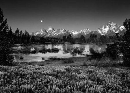 1115jones-carter-moon_over_tetons_clyde_butcher